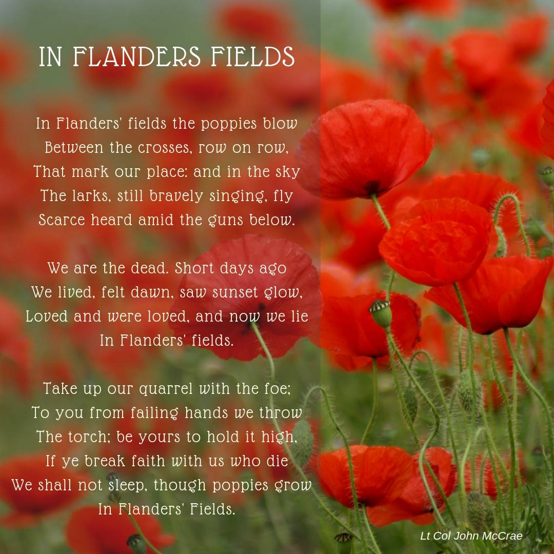 Poppies with Flanders Field poem
