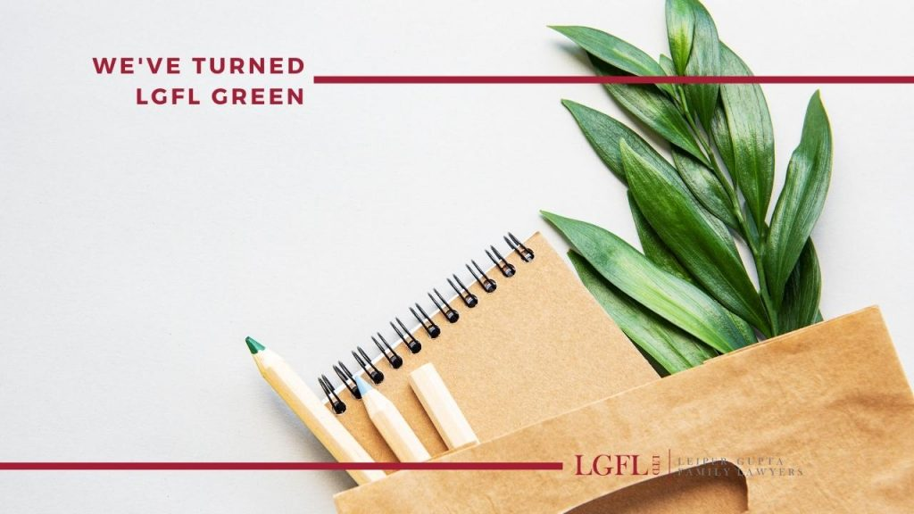 green leaves in office bag and pens